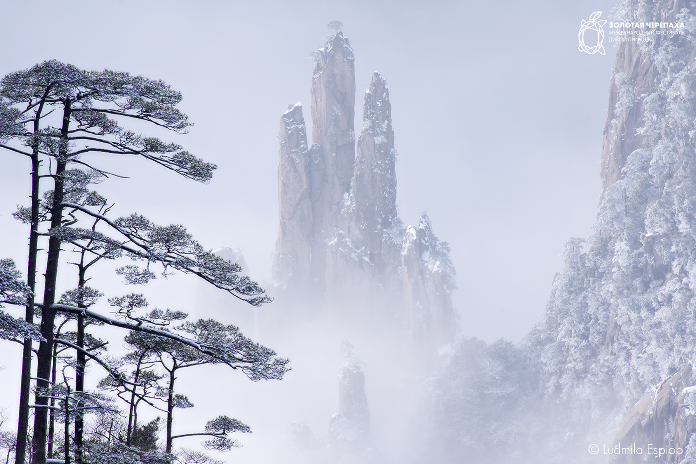 8 Ludmila Espiob Floating mountains China Huangshan